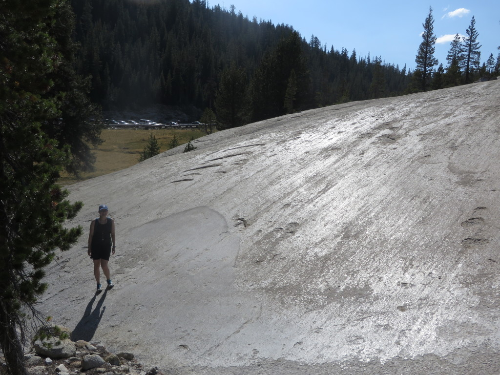 Glacial striations in Tuolumne meadows